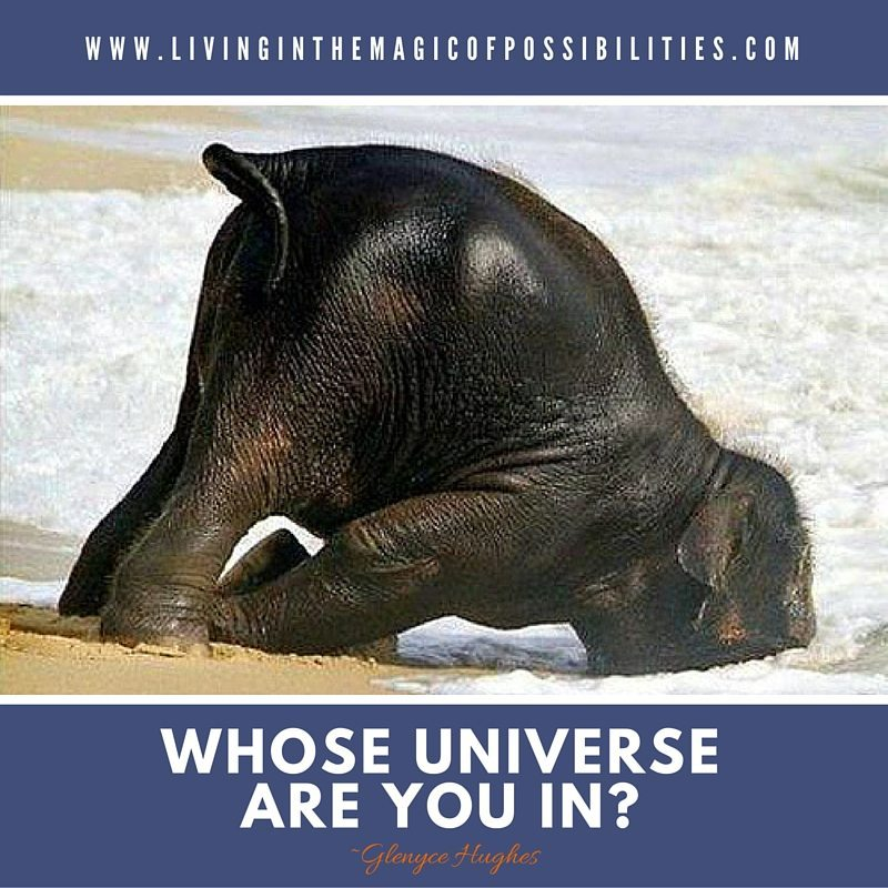 Whose Universe Are You In?